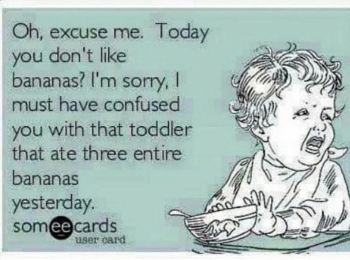 """101 Funny Mom Memes - """"Oh, excuse me. Today you don't like bananas? I'm sorry, I must have confused you with that toddler that ate three entire bananas yesterday."""""""