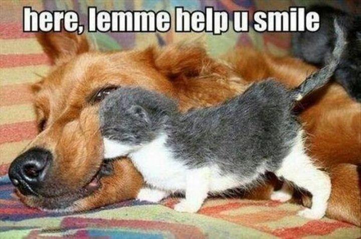 """101 Smile Memes - """"Here, lemme help u smile."""""""