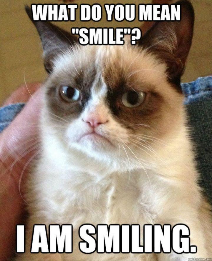 """101 Smile Memes - hat do you mean smile? I am smiling."""""""