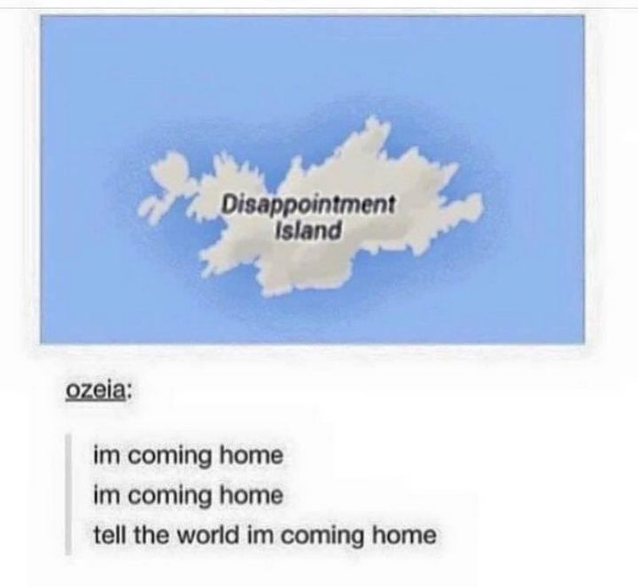 "61 Depression Memes - ""Disappointment Island: I'm coming home, I'm coming home, tell the world, I'm coming home."""