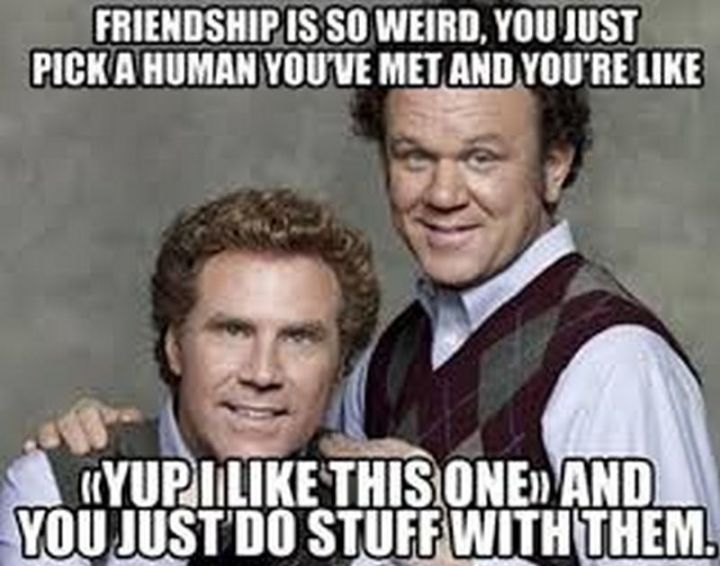 "65 Funny Friend Memes - ""Friendship is so weird. You just pick a human you've met and you're like 'yup I like this one' and you just do stuff with them."""