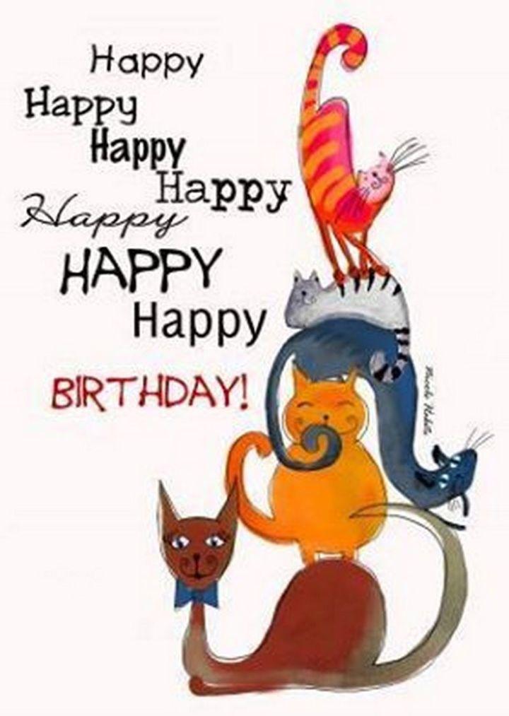 "101 Funny Cat Birthday Memes - ""Happy happy happy happy happy happy happy birthday!"""