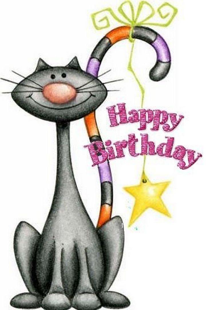 """101 Funny Cat Birthday Memes - """"Happy birthday."""""""