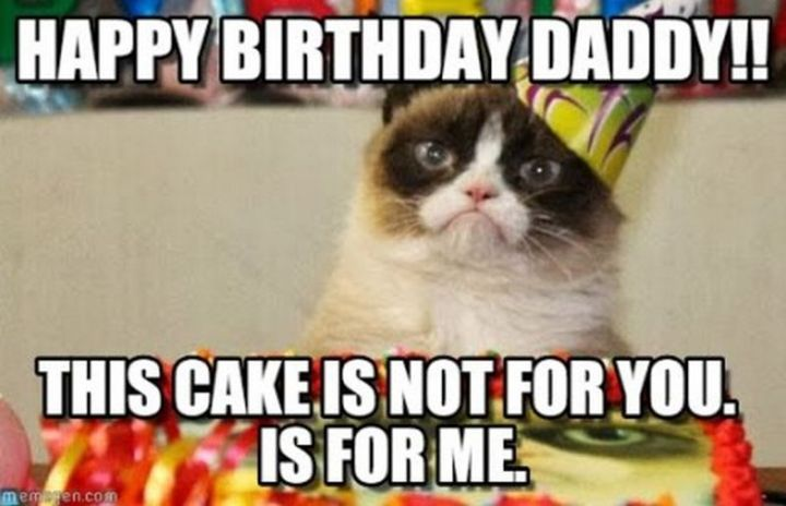 "101 Funny Cat Birthday Memes - ""Happy birthday daddy!! This cake is not for you. Is for me."""