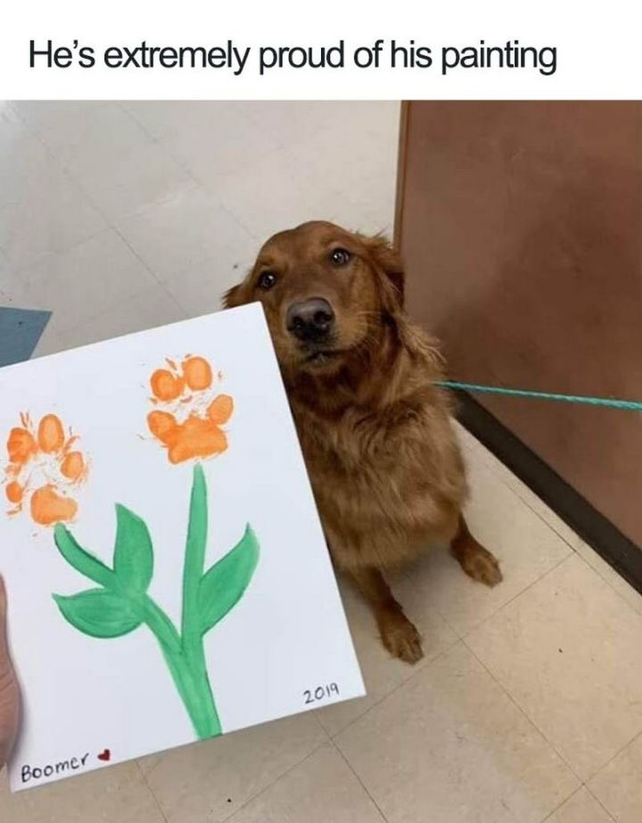 "55 Cute Dog Posts - ""He's extremely proud of his painting."""