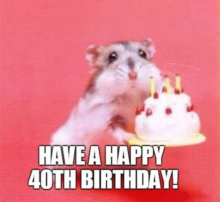 "101 Happy 40th Birthday Memes - ""Have a happy 40th birthday!"""
