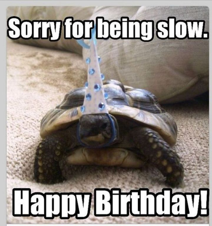 """85 Happy Belated Birthday Memes - """"Sorry for being slow. Happy Birthday!"""""""