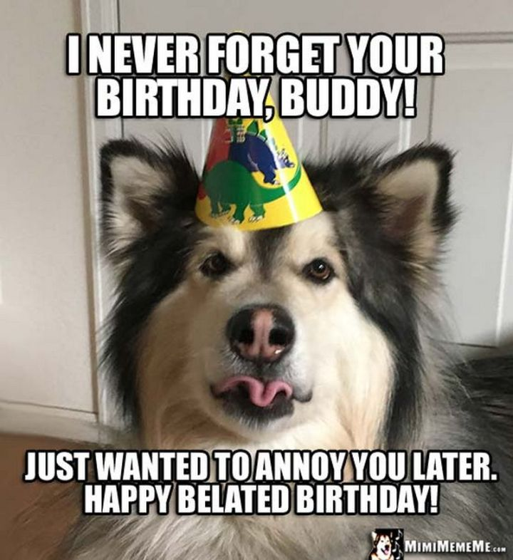 """85 Happy Belated Birthday Memes - """"I never forget your birthday, buddy! Just wanted to annoy you later. Happy belated birthday!"""""""
