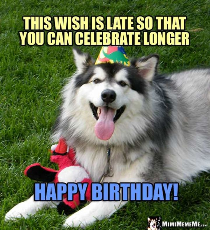 """85 Happy Belated Birthday Memes - """"This wish is late so that you can celebrate longer. Happy birthday!"""""""