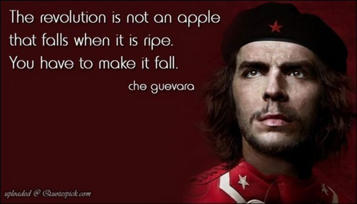 "41 Incredibly Powerful Quotes - ""The revolution is not an apple that falls when it is ripe. You have to make it fall."" - Che Guevara"