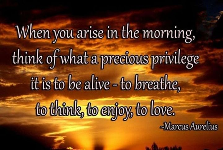 """75 Good Morning Quotes - """"When you arise in the morning, think of what a precious privilege it is to be alive - to breathe, to think, to enjoy, to love."""" - Marcus Aurelius"""