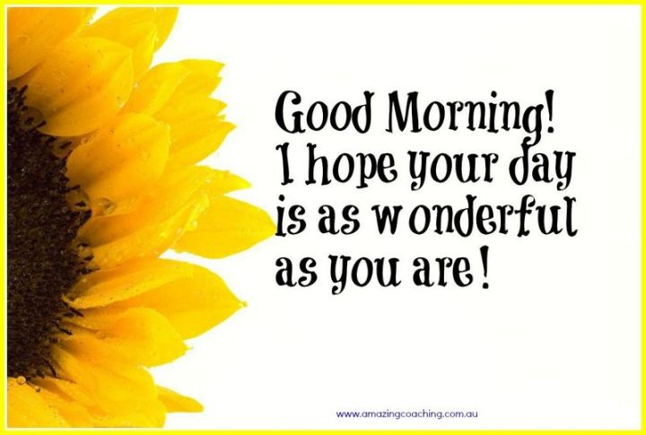 """75 Good Morning Quotes - """"Good morning! I hope your day is as wonderful as you are!"""" - Anonymous"""