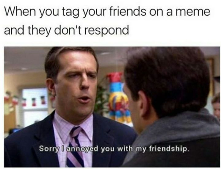 """57 Funny 'the Office' Memes - """"When you tag your friends on a meme and they don't respond: Sorry I annoyed you with my friendship."""""""
