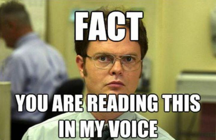 """57 Funny 'the Office' Memes - """"Fact: You are reading this in my voice."""""""