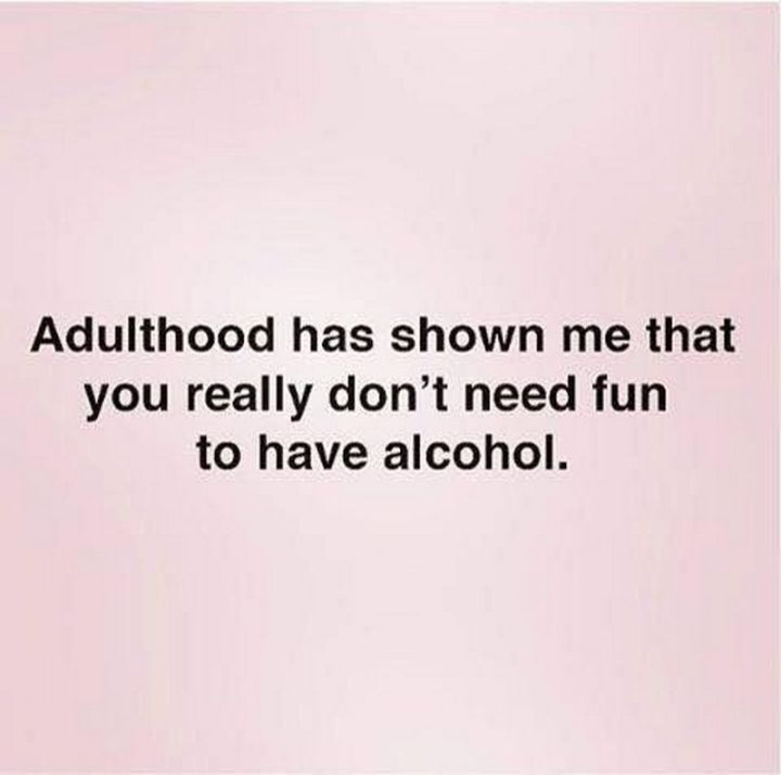 """61 Funny Clean Memes - """"Adulthood has shown me that you really don't need fun to have alcohol."""""""
