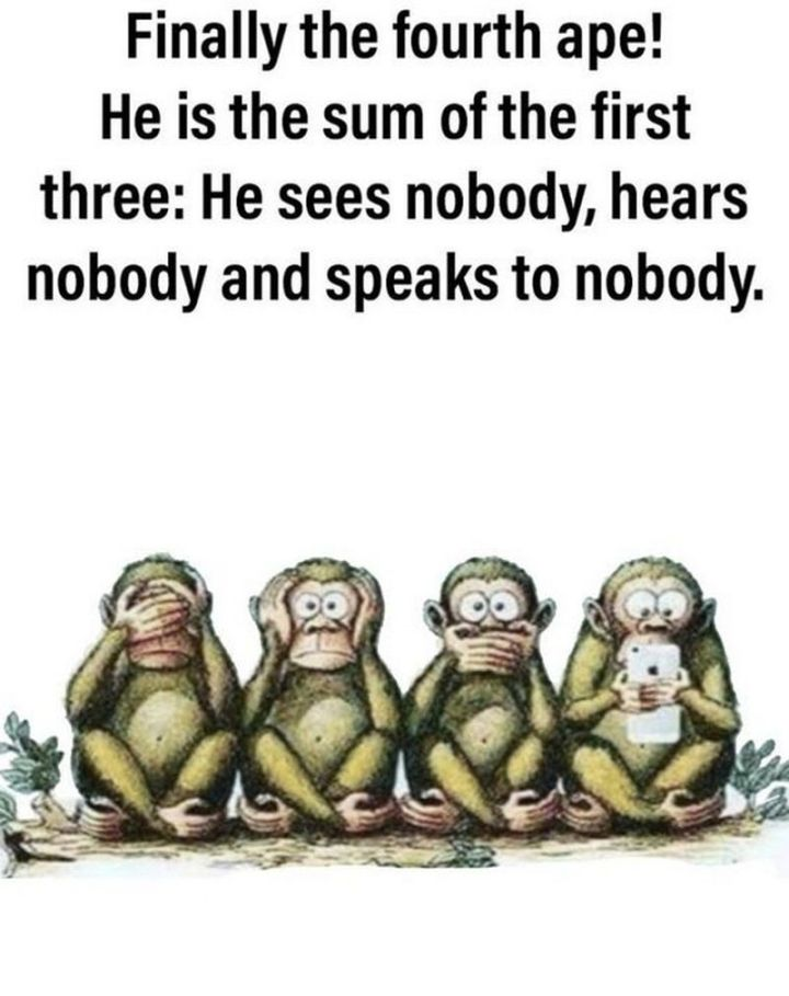 """61 Funny Clean Memes - """"Finally the fourth ape! He is the sum of the first three: He sees nobody, hears nobody, and speaks to nobody."""""""