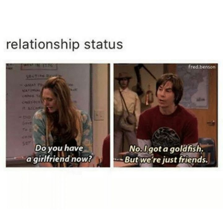 """59 Girlfriend Memes - """"Relationship status: Do you have a girlfriend now? No. I got a goldfish. But we're just friends."""""""