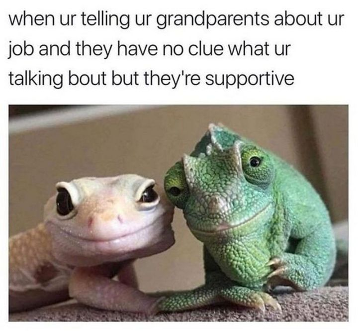 "67 Hilarious Memes - ""When ur telling ur grandparents about ur job and they have no clue what ur talking about but they're supportive."""