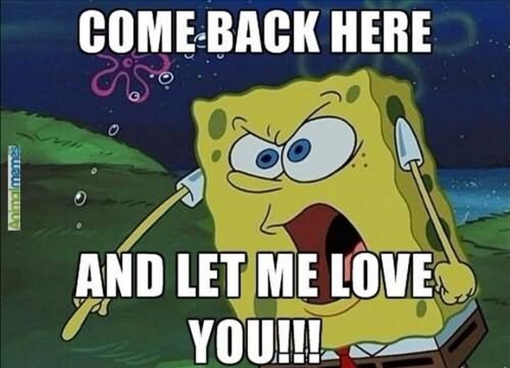 "55 Love Memes - ""Come back here and let me love you!!!"""