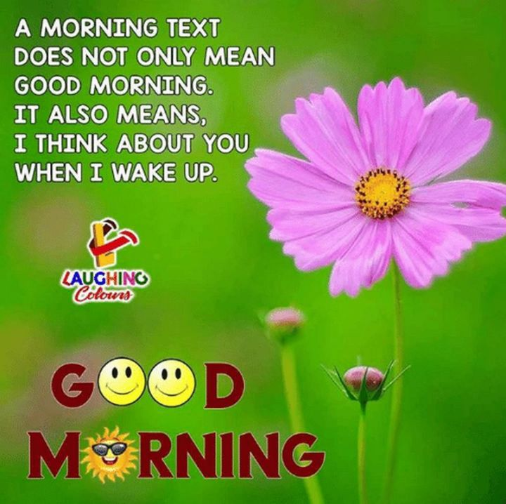 "101 Funny Good Morning Memes - ""A morning text does not only mean good morning. It also means I think about you when I wake up."""