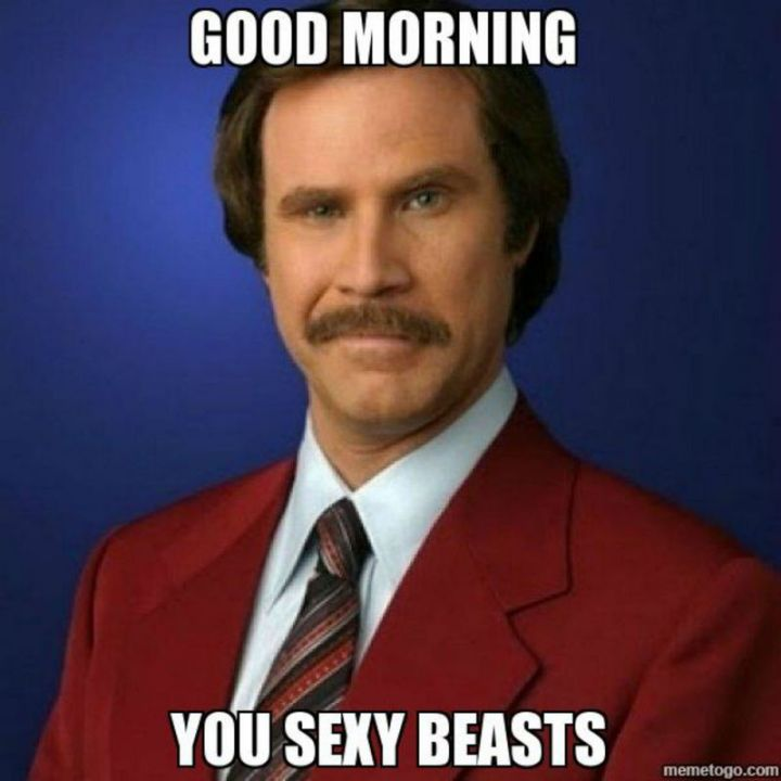 "101 Funny Good Morning Memes - ""Good morning you sexy beasts."""