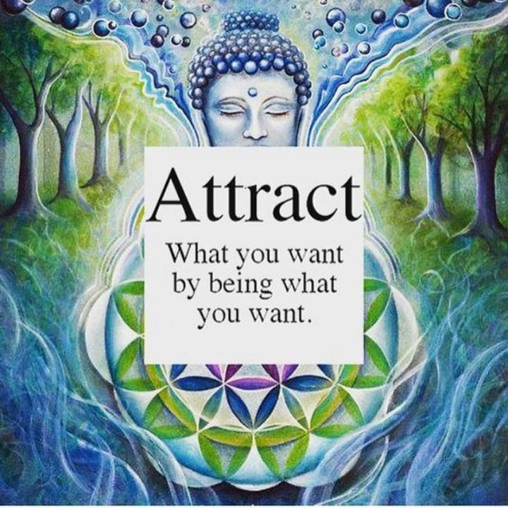 """59 Positive Memes - """"Attract what you want by being what you want."""""""