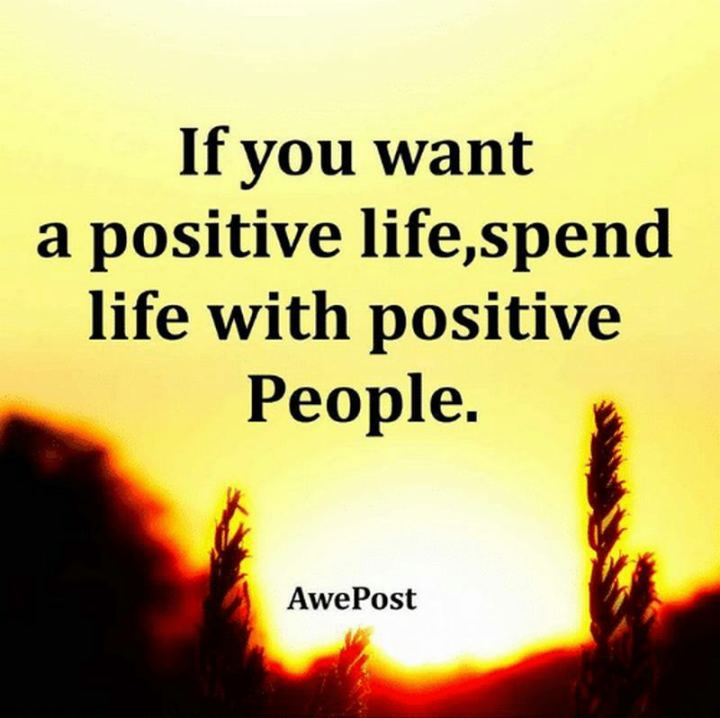"""59 Positive Memes - """"If you want a positive life, spend life with positive people."""""""