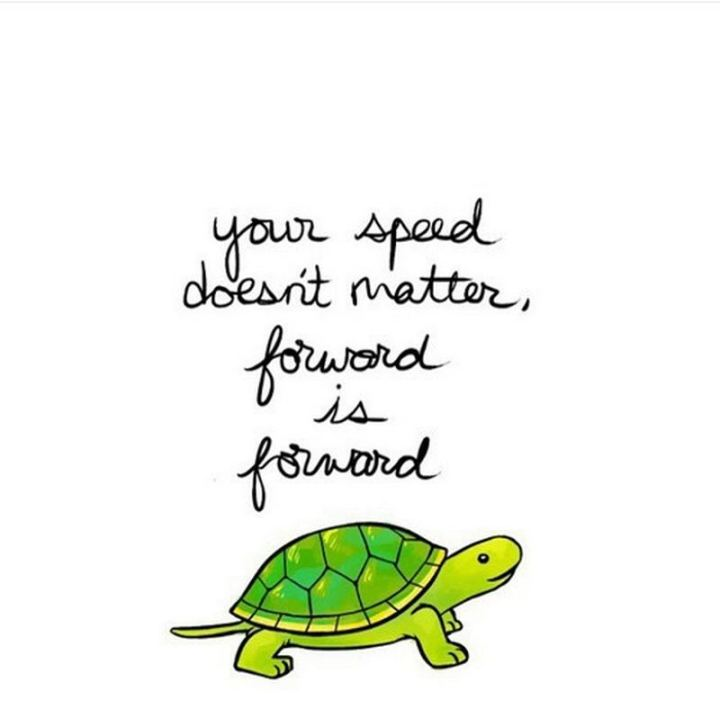 """59 Positive Memes - """"Your speed doesn't matter, forward is forward."""""""