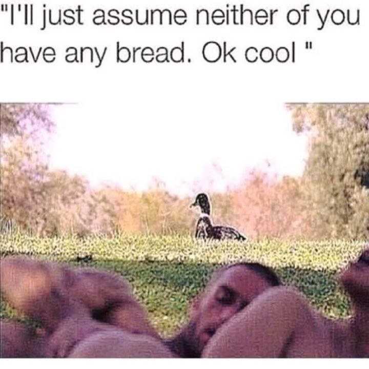 "69 Sexy Adult Memes - ""I'll just assume neither of you has any bread. Ok cool."""
