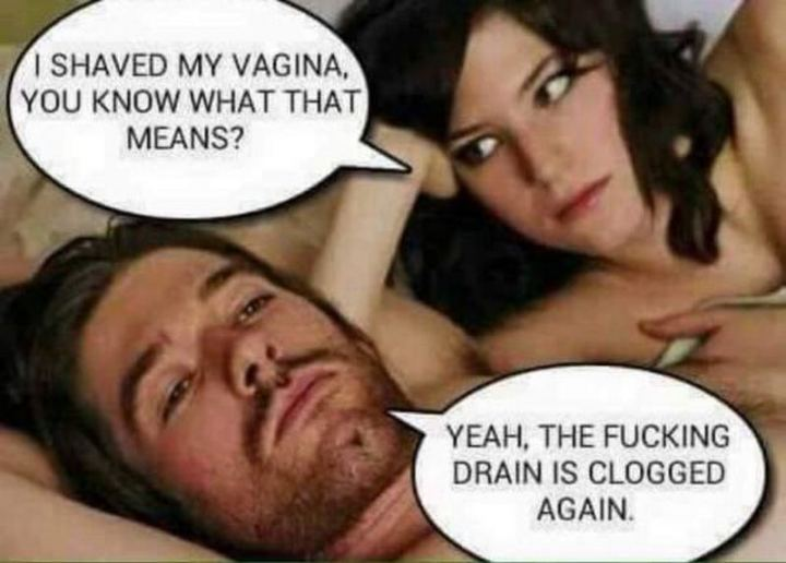 "69 Sexy Adult Memes - ""I shaved my vagina, you know what that means? Yeah, the fucking drain is clogged again."""