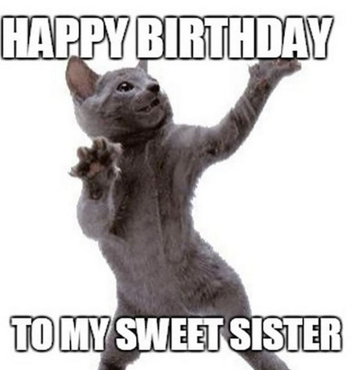 "91 Sister Birthday Memes - ""Happy birthday to my sweet sister."""