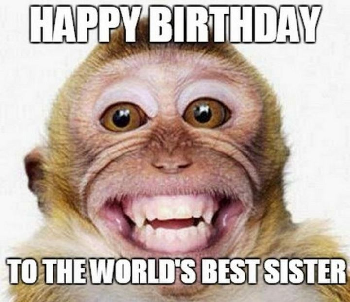 "91 Sister Birthday Memes - ""Happy birthday to the world's best sister."""