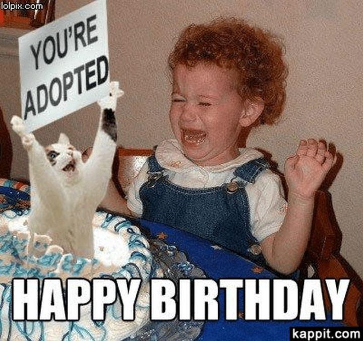 "91 Sister Birthday Memes - ""Happy birthday. You're adopted."""