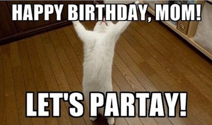 "101 Happy Birthday Mom Memes - ""Happy birthday, mom! Let's partay!"""