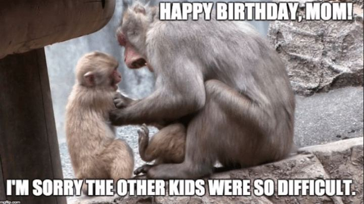 """101 Happy Birthday Mom Memes - """"Happy birthday mom! I""""m sorry the other kids were so difficult."""""""