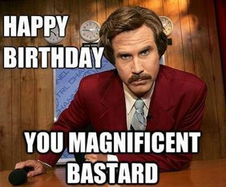 "71 Happy Birthday Brother Memes - ""Happy birthday you magnificent bastard."""