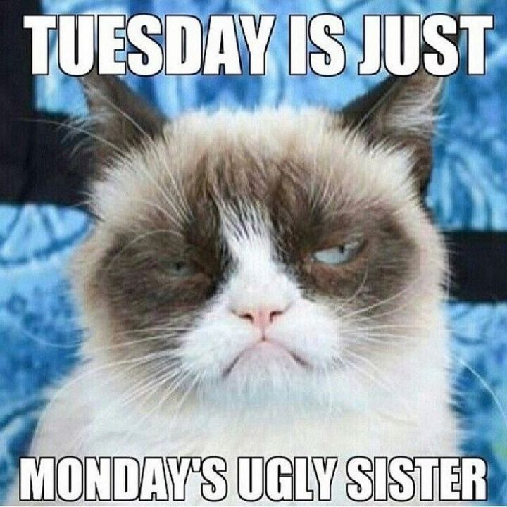 "55 Tuesday Quotes - ""Tuesday is Monday's ugly sister."" - Unknown"