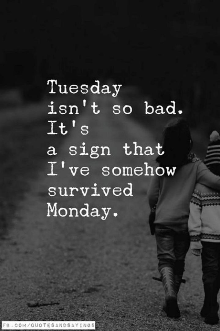 "55 Tuesday Quotes - ""Tuesday isn't so bad...It's a sign that I've somehow survived Monday."" - Unknown"