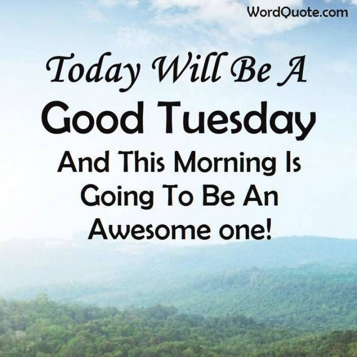 "55 Tuesday Quotes - ""Today will be a good Tuesday and this morning is going to be an awesome one!"" - Unknown"