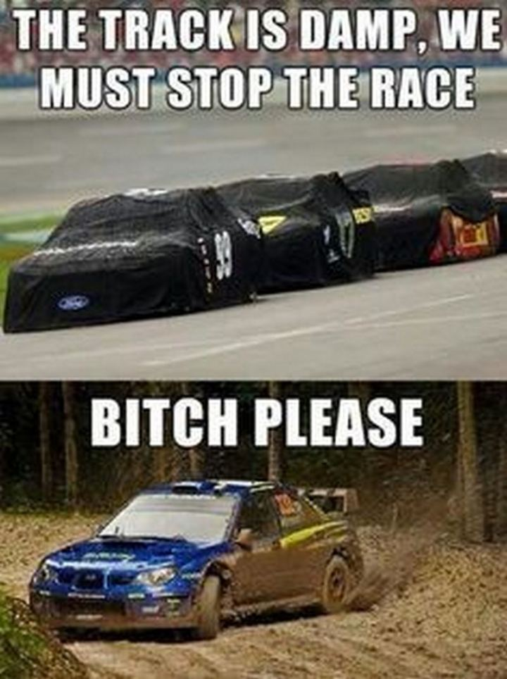 "85 Car Memes - ""The track is damp, we must stop the race. [censored] please."""