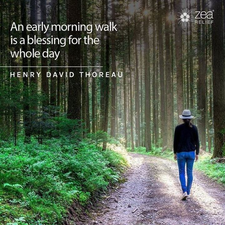 """75 Good Morning Quotes - """"An early-morning walk is a blessing for the whole day."""" - Henry David Thoreau"""