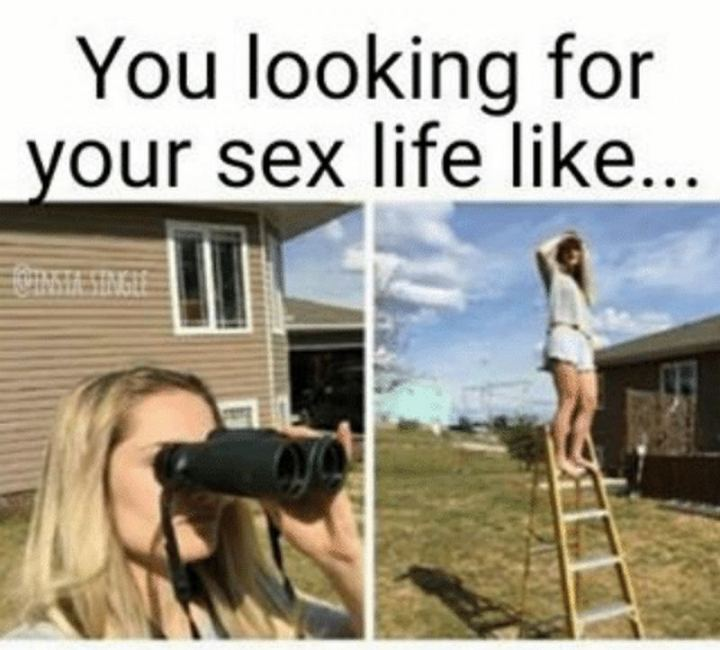 """81 Funny Life Memes - """"You looking for your sex life like..."""""""