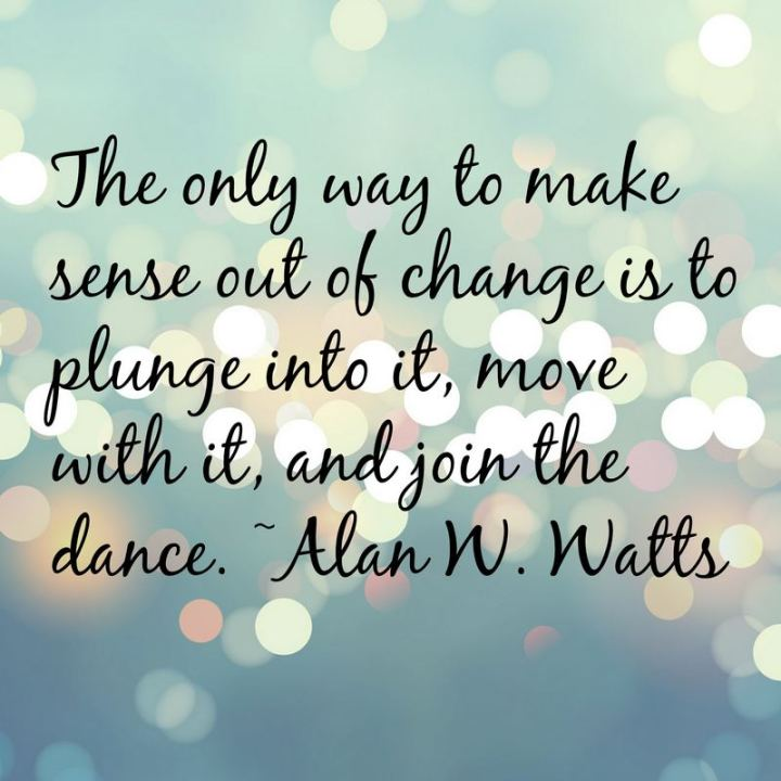 """81 Funny Life Memes - """"The only way to make sense out of change is to plunge into it, move with it, and join the dance."""" - Alan W. Watts"""