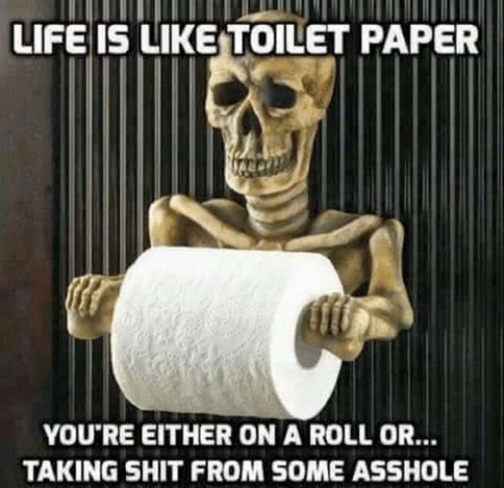 """""""Life is like toilet paper. You're either on a roll or...Taking $@!t from an @$$hole."""""""