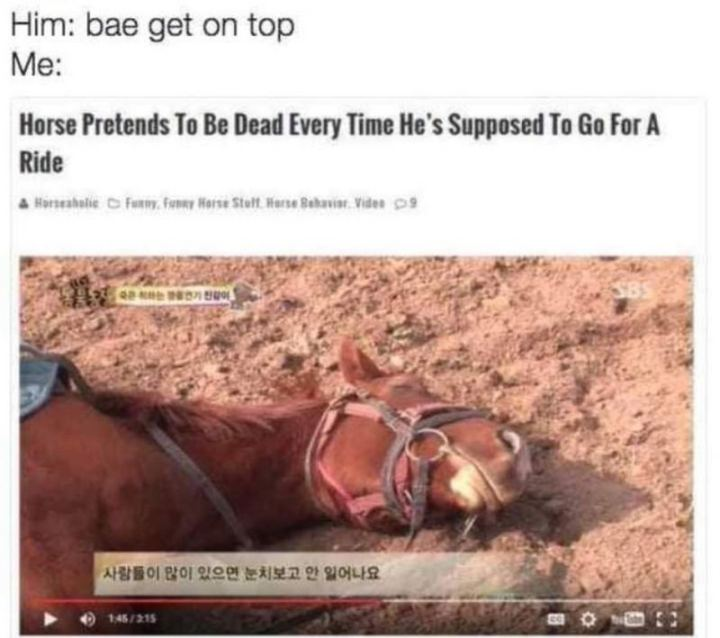 """71 Funny Dirty Memes - """"Him: Bae, get on top. Me: Horse pretends to be dead every time he's supposed to go for a ride."""""""