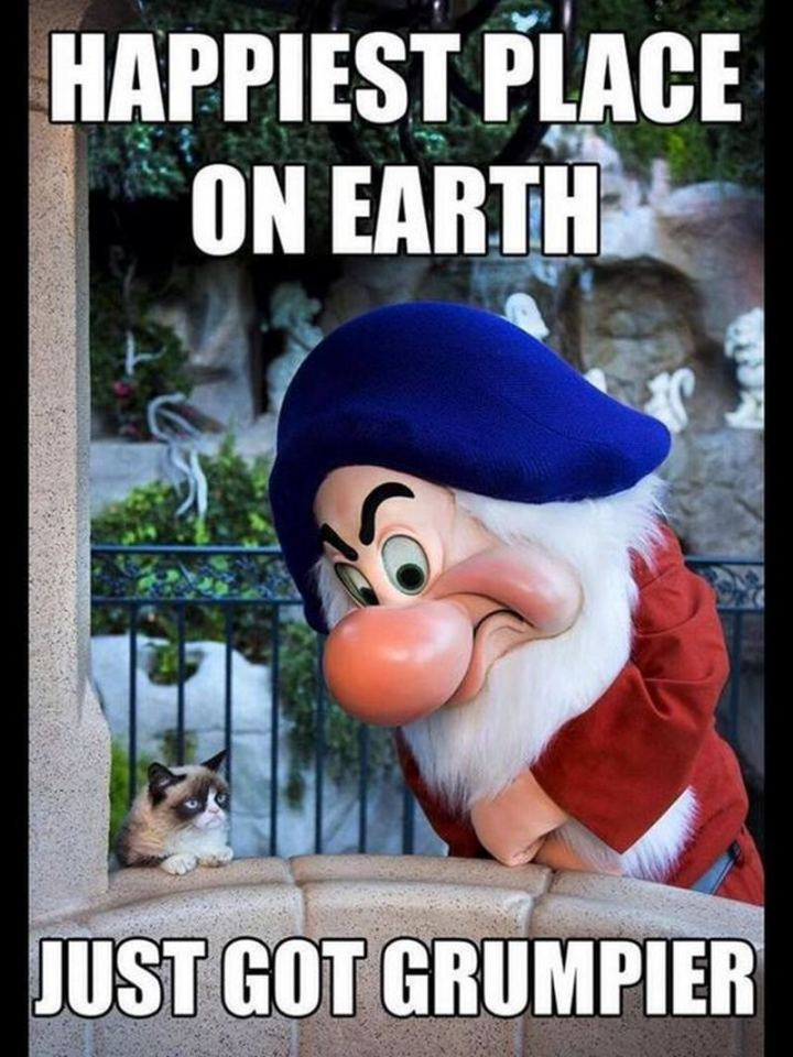 "51 Funny Disney Memes - ""Happiest place on earth just got grumpier."""