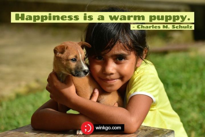 "53 Happy Quotes - ""Happiness is a warm puppy."" - Charles M. Schulz"