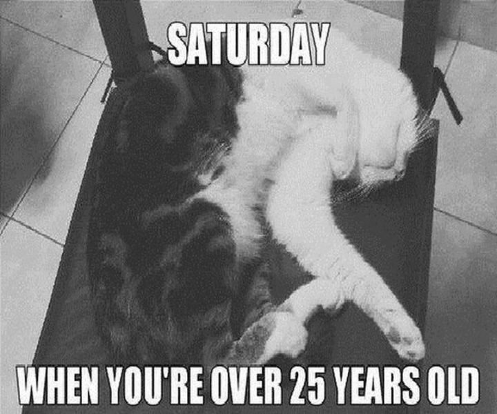 "101 Saturday Memes - ""Saturday when you're over 25 years old."""