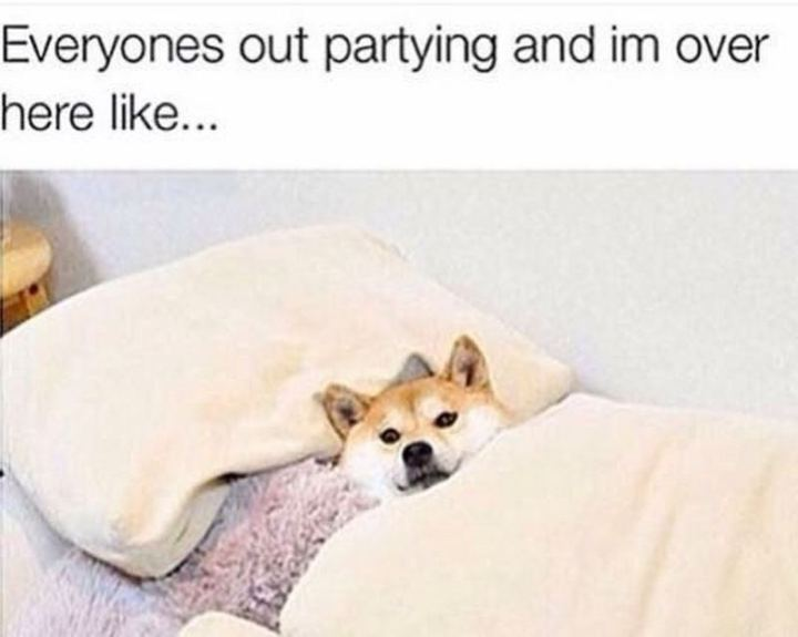 "101 Saturday Memes - ""Everyones out partying and I'm over here like..."""