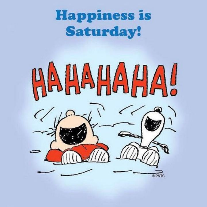 "101 Saturday Memes - ""Happiness is Saturday! Hahahaha!"""